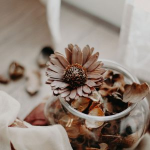 Natural ideas for a scented home in Autumn